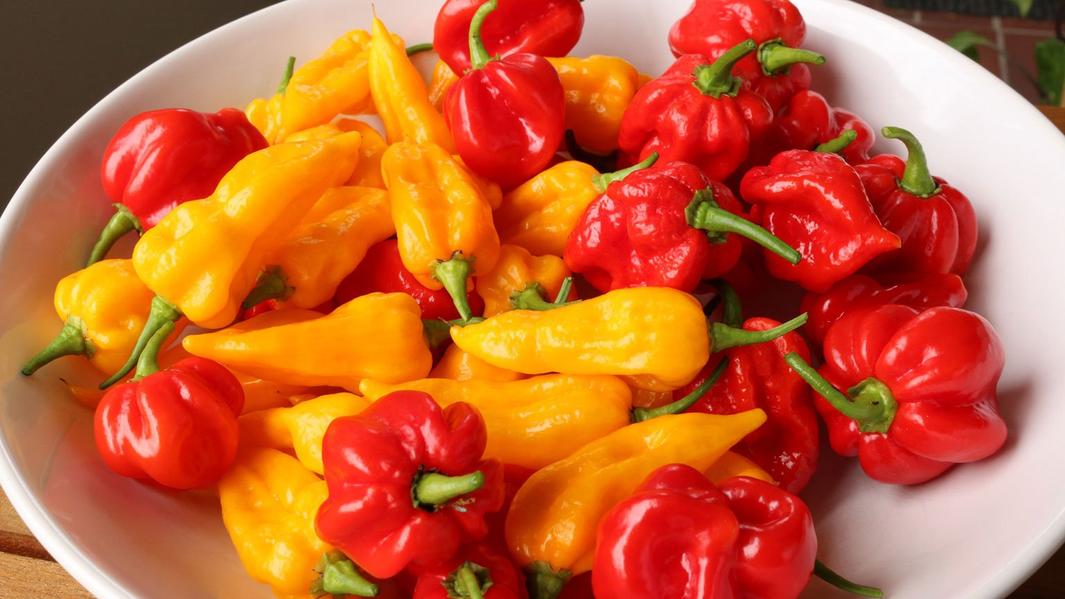 The World of Food: Hot and Spicy