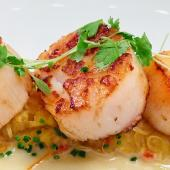 Seared Maine Diver Scallops