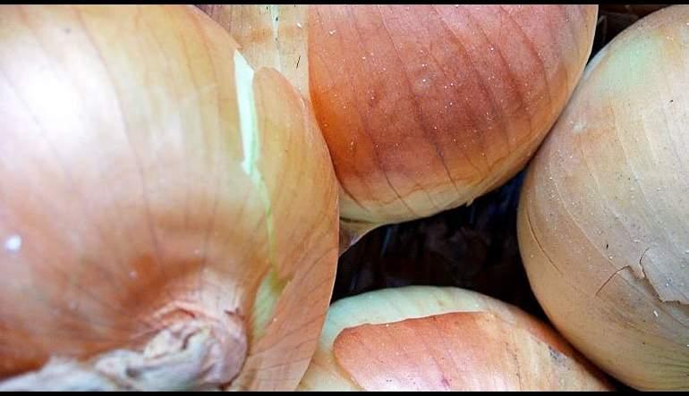 Jean Claude's Onion Tart