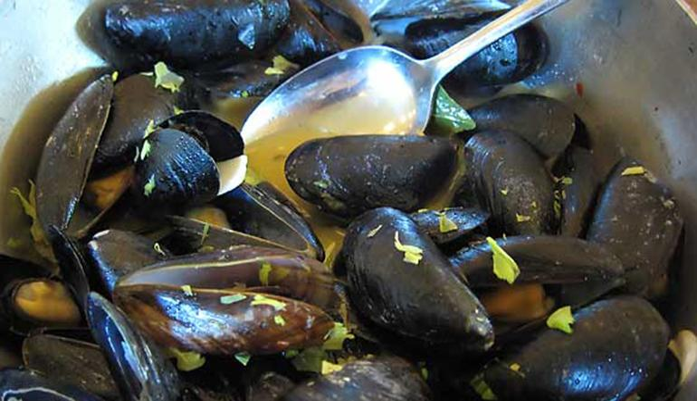 Publican Mussels