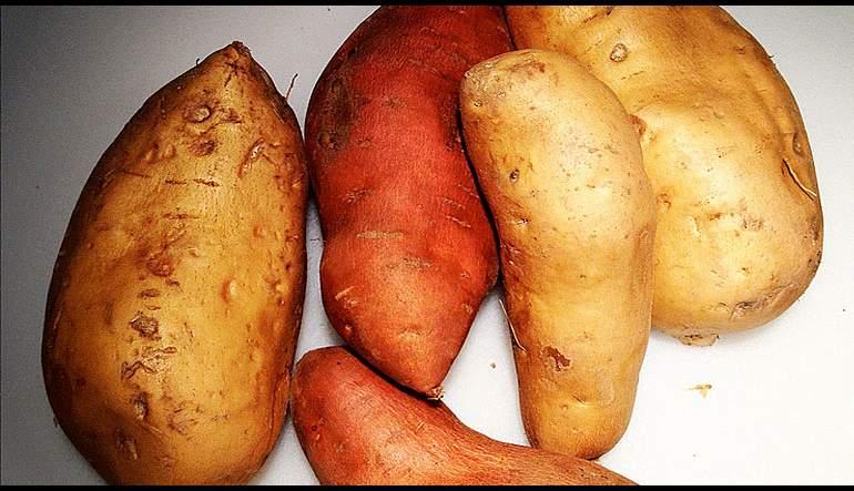 Sweet Potato Quesadillas with Cilantro Pesto