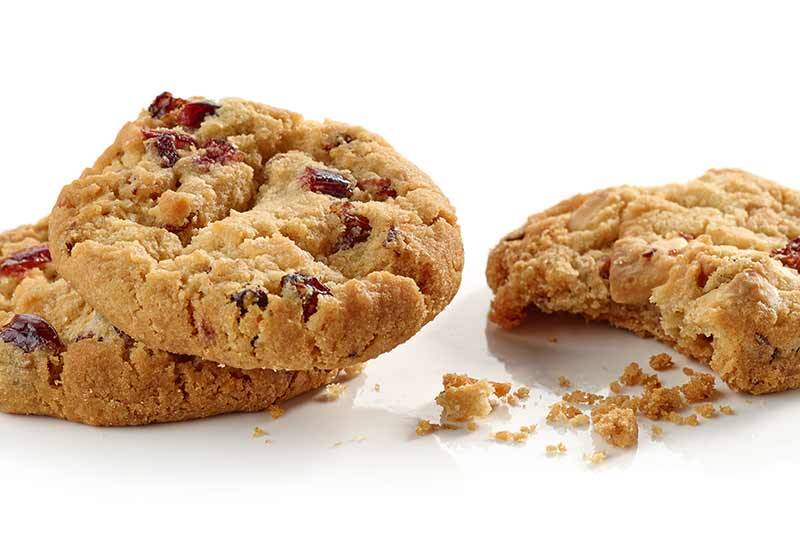 Cookies with dried cranberries in them